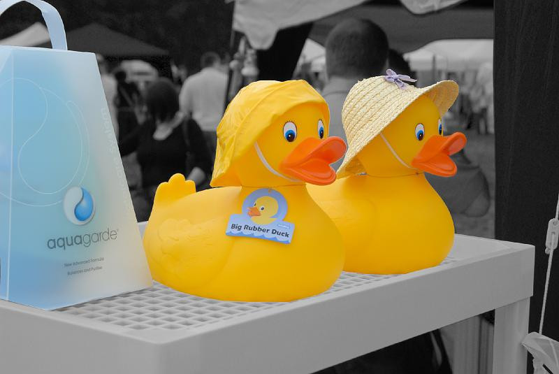 DD_rubber duck.jpg