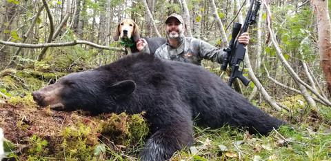 Black Bear Maine 39.jpeg