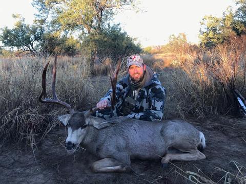 Mexico Mule Deer 28.JPG