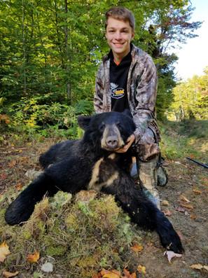 Black Bear Maine 13.jpg