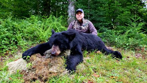Black Bear Maine 31.jpg