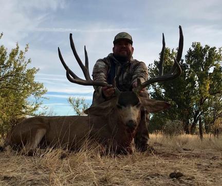 Mexico Mule Deer 31.JPG