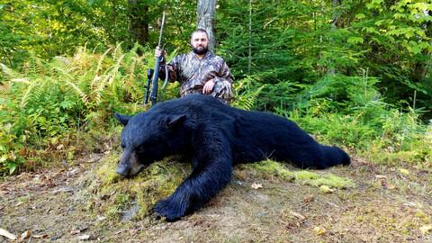 Black Bear Maine 8.jpg