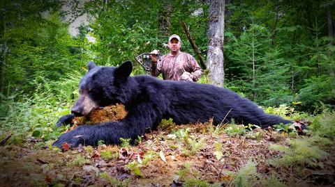 Black Bear Maine 2.jpg