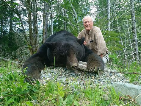 beargallery15.jpg