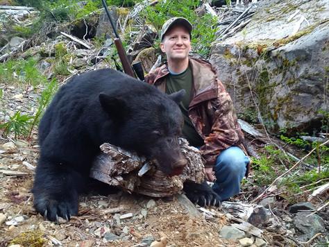 beargallery7.jpg