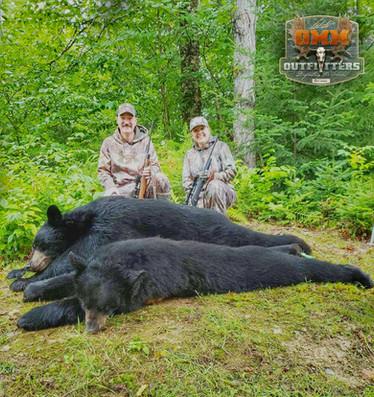 Black Bear Maine 37.jpeg