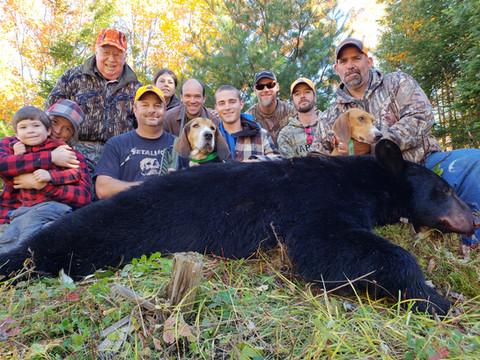 Black Bear Maine 35.jpg