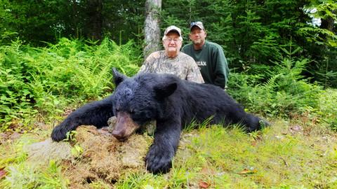 Black Bear Maine 29.jpeg