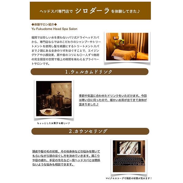 シロダーラ体験レポート1.JPG