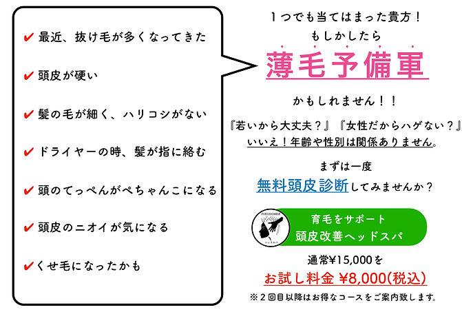 薄毛予備軍のコピー3.jpg