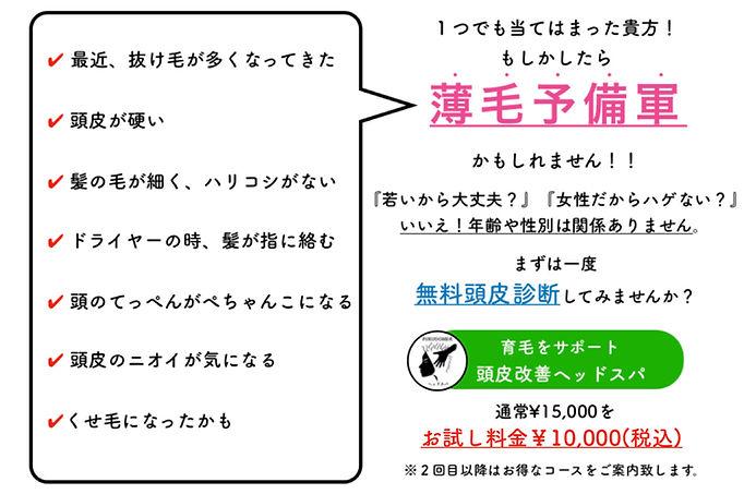 IMG_7287.jpg