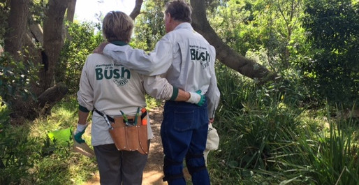 Don't turn your back on the Bush