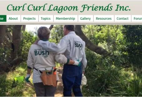 CCLF website design