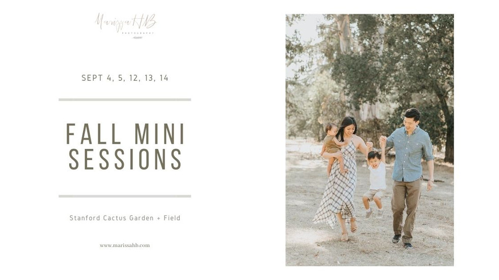 Fall Mini Sessions in the SF Bay Area