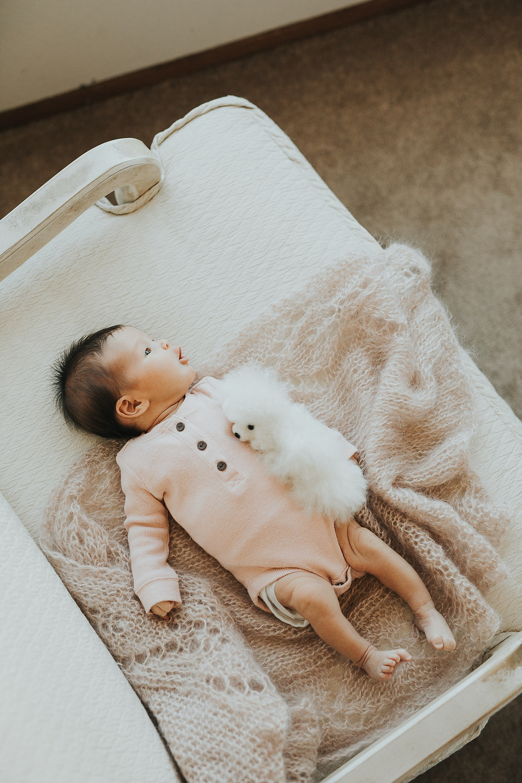 Baby on chair newborn photos