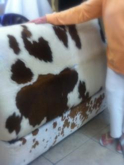Upholstery Cowhide