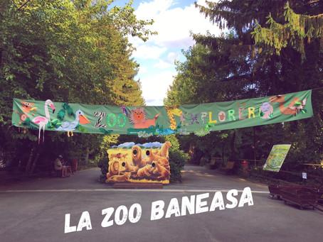 La Gradina Zoo din Baneasa