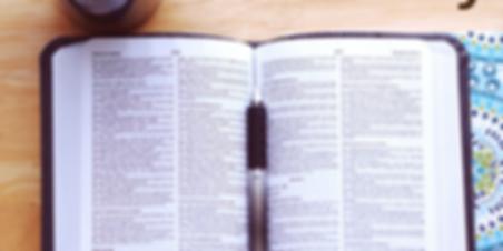 Bible Study website.png