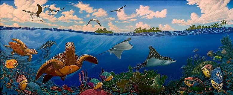 coral reef sea turtles leopard ray.jpg