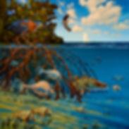 fish mangroves underwater