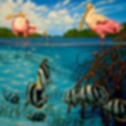 spoonbills butterfly fish