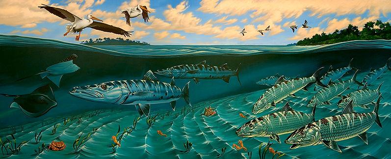 bonefish barracuda