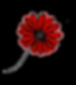 Little Flower family medicine logo