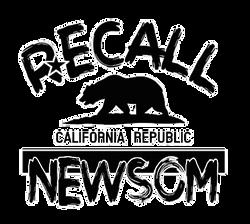 Recall Newsom flag
