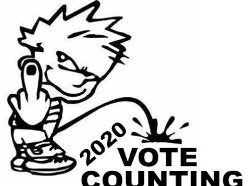 Piss on the 2020 Vote Counting