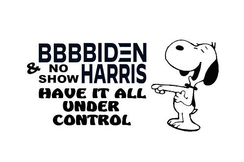 Bbbbiden & No Show Harris Have It All Under Control Decal