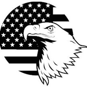 American Flag with Eagle Head Decal