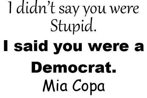 I Didn't Say You Were Stupid. I said You Were A Democrat / Republican Decal