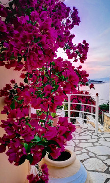 Greece's flowers