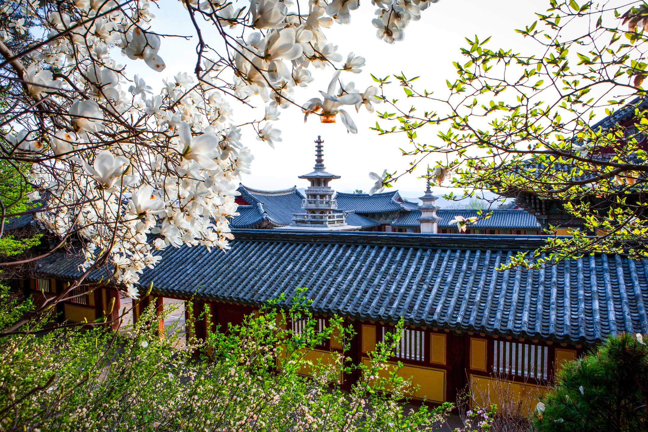 Bulguksa Temple