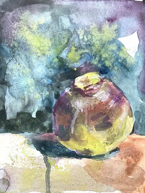 Turnip, 11 x 8 inches