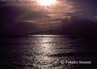 Hawaii-HP Amami.jpg