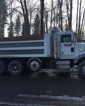 TCG Dump Truck.jpg