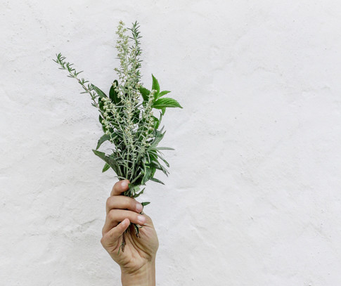 Kick your cold with herbs