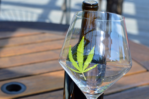 Cannabis Wine How To
