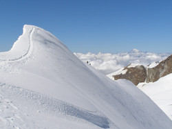 Cresta Parrot Monte Rosa