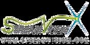 logo Streamvision