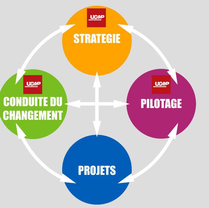 Accompagnement, stratégie, conduite du changement, pilotage, projets