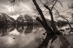 Jenny Lake Reflections 1