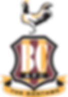 Bradford_City_AFC-2.png