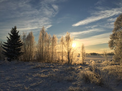 Winter in Forneby