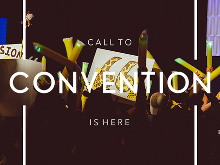 Call to Convention Packet 2017 Packet Out Now!