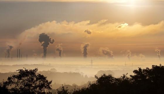 El papel de las empresas y la productividad con bajas emisiones