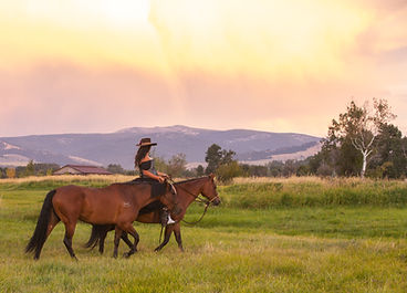 Lovely mare and filly being ridden by our ranch hand
