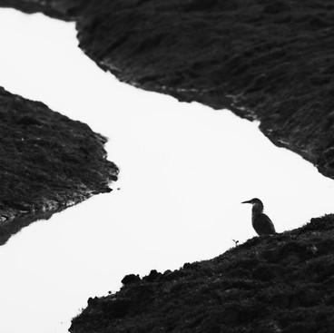 Edge of patience